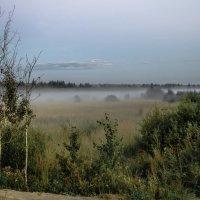 туман :: Рома Григорьев
