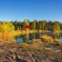 Лесное озеро :: Александр Тулупов