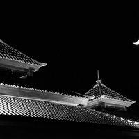 летняя ночь в азиатском стиле :: Юрий С.