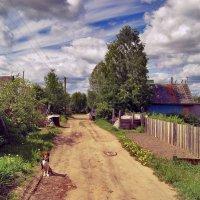 Дачная жизнь :: Наталья Гжельская