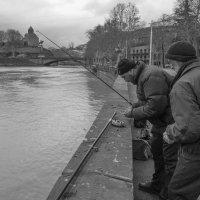 Тбилисская рыбалка :: Алексей Окунеев