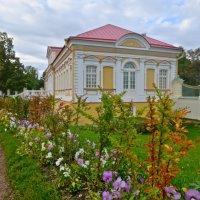 картинный дом в Ораниенбауме :: Елена