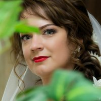 Невеста. :: Владимир Терехов