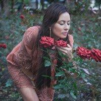 после дождя так пахнут розы! :: Вячеслав
