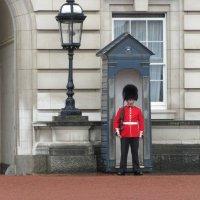 Гвардеец у Букингемского дворца :: Mariya laimite