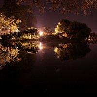 Царский пруд ночью :: Виктор Истомин