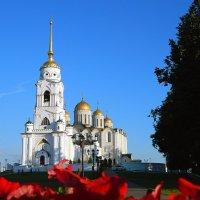 Свято-Успенский Кафедральный собор. :: Светлана Иванчина