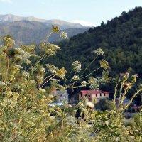 Тихий рай в горах. :: Anna Gornostayeva