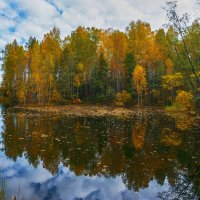 Лесное озеро :: vladimir