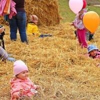 Хорошо поваляться в свежем сене :: Лидия (naum.lidiya)