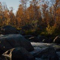 Осень :: Валерия Ширковцова