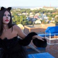 кошка гуляющая по крышам... ) :: Райская птица Бородина