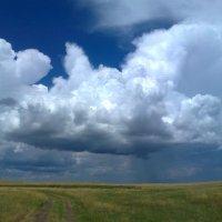 Облака :: Наталья А