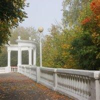 Тихо крадется осень... :: Ната Волга