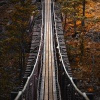 подвесной мост :: Ирэна Мазакина