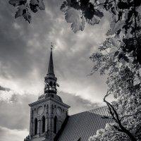Связь с небесами :: Alevtina Zibareva
