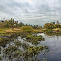 Осень на реке Ёмбе... :: Федор Кованский