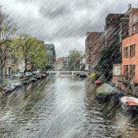 дождь в Амстердаме :: Людмила Селегенева