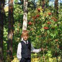 В школьном парке :: Алексей http://fotokto.ru/id148151Морозов