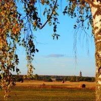 Сельский пейзаж :: Наталья