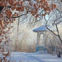 В зимнем парке :: Елена ))