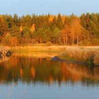 Осень золотая загляделась в зеркало реки :: Павлова Татьяна Павлова
