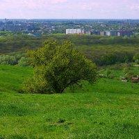 Апрель :: Игорь Сикорский