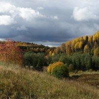 Осень в нашей местности :: Валерий Чепкасов