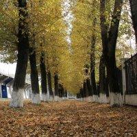 Осень...)) :: WADIM *****