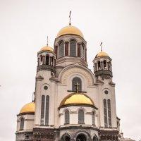 Храм на Крови во имя Всех Святых в Земле Российской просиявших :: Михаил Вандич