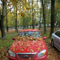 Из альбома Осень :: Борис Гуревич