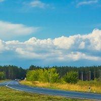 Облока за лесом :: юрий Амосов