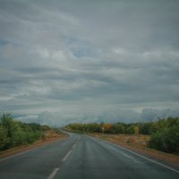 В пути... :: Irina Polkova