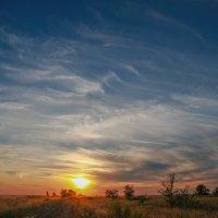 На закате... :: Irina Polkova