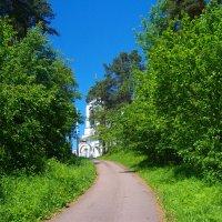 Дорога к храму :: Grey Bishop