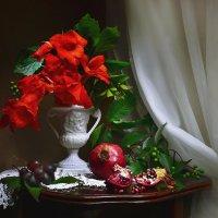 Тихо звучит Вивальди… Ах, как вечер хорош! :: Валентина Колова