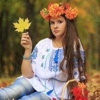 яркая осень :: Наталья Малкина