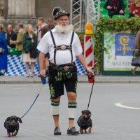 Старый Баварец :: Eugen Pracht