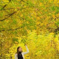 Прогулка в парке :: Дмитрий Соколов