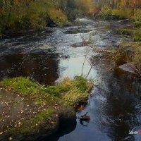 Осенние воды :: Борис Соловьев