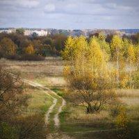 Осенний пейзаж из под Борисова :: Владислав Писаревский