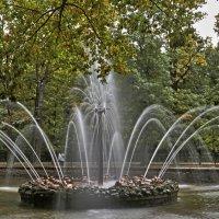 Сентябрь в Петергофе :: Alexandr Zykov
