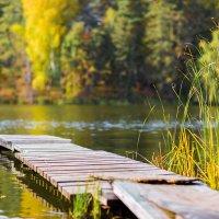 Осень на мостике... :: игорь козельцев