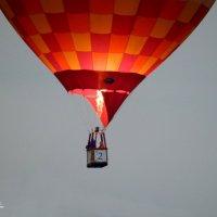 Соревнования на воздушном шаре :: Анастасия Bur