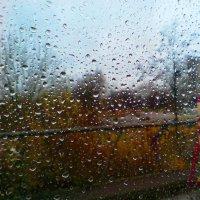 Дождь :: Виктор Никитенко