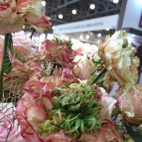 Экзоты - розы на выставке цветов :: Galina194701