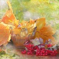 Осенний Фейерверк :: galina tihonova