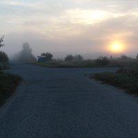 восход, туман. :: Иван Торопов