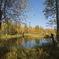 Осень на Вяле. :: Владимир
