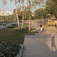 Селфи с городским пейзажем :: Елена Ахромеева